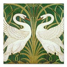"""SWANS_GREEN.png Square Car Magnet 3"""" x 3"""""""