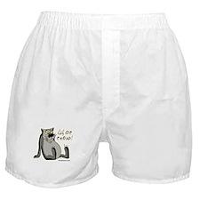 Schas spoyu Boxer Shorts
