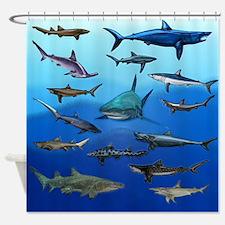 Shark Gathering Shower Curtain