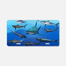 Shark Gathering Aluminum License Plate