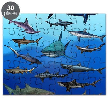 Shark Gathering Puzzle