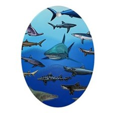 Shark Gathering Ornament (Oval)