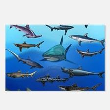 Shark Gathering Postcards (Package of 8)