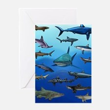 Shark Gathering Greeting Card