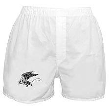 Winged Monkey Boxer Shorts