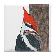 Pileated Woodpecker Tile Coaster