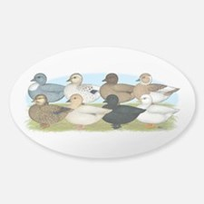 Eight Call Ducks Sticker (Oval)