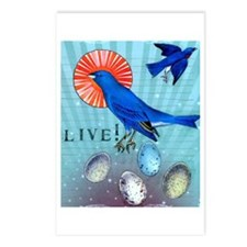 Live! Postcards (Package of 8)