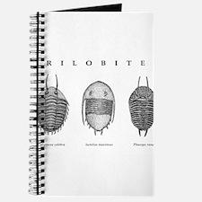 Trilobites Journal