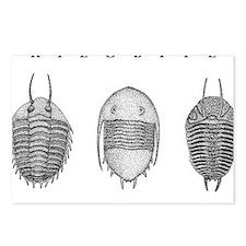 Trilobites Postcards (Package of 8)