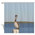 Pelican Photograph Shower Curtain
