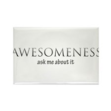 awesomness Rectangle Magnet