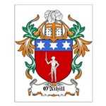 O'Nihill Coat of Arms Small Poster
