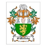 O'Mulledy Coat of Arms Small Poster