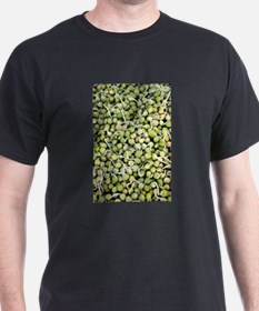 Peas Sprouts T-Shirt