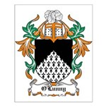 O'Lunny Coat of Arms Small Poster