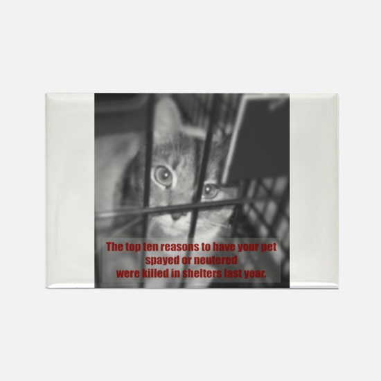 Top Ten Reasons Caged Cat Rectangle Magnet