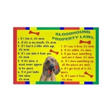 Bloodhound Property Laws 1 Rectangle Magnet