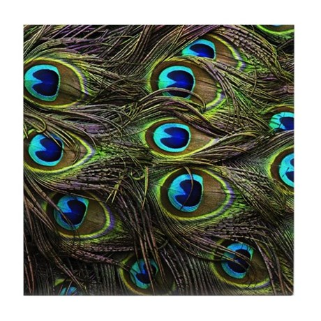 Peacock Feathers Tile Coaster