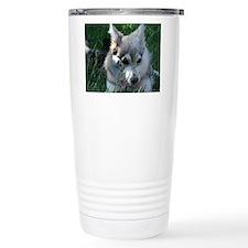 Alaskan Klee Kai hiding in grass Travel Mug