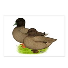 Khaki Call Ducks Postcards (Package of 8)