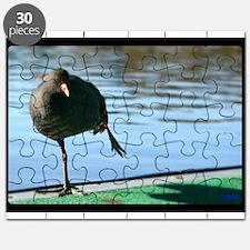 Doing the Hokey Pokey Puzzle