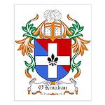 O'Kinahan Coat of Arms Small Poster