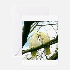 Adoring Cockatoos Greeting Card