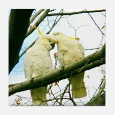 Adoring Cockatoos Tile Coaster