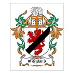 O'Hyland Coat of Arms Small Poster