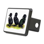 Cayuga Ducklings Rectangular Hitch Cover