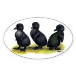 Cayuga Ducklings Sticker (Oval 50 pk)