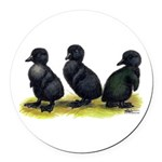 Cayuga Ducklings Round Car Magnet
