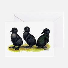 Cayuga Ducklings Greeting Card