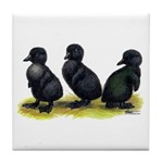 Cayuga Ducklings Tile Coaster