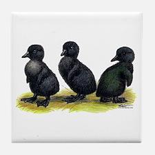Cayuga Ducklings Tile Coaster