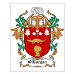 O'Horgan Coat of Arms Small Poster