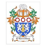 O'Hoolihan Coat of Arms Small Poster