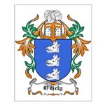 O'Hely Coat of Arms Small Poster