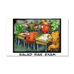 Salad Bar Exam Car Magnet 20 x 12