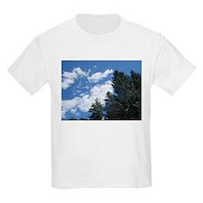 LiamAndShaneINC T-Shirt