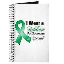 Special Liver Cancer Journal