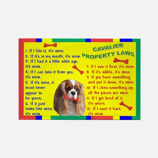 3-Property Laws -Cavalier,Blen Magnets