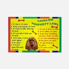 Property Laws -Cavalier,Ruby Magnets