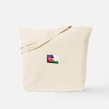 Pool Game Tote Bag