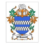 O'Hamill Coat of Arms Small Poster