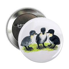 "Blue Swedish Ducklings 2.25"" Button"