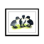 Blue Swedish Ducklings Framed Panel Print