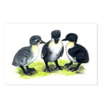 Blue Swedish Ducklings Postcards (Package of 8)