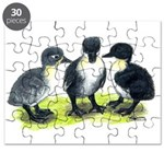 Blue Swedish Ducklings Puzzle